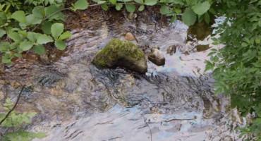 Udruženje Zeleni Neretva: Nafta iz cisterne teče Neretvom i Trešanicom