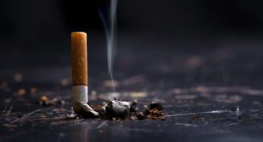 Federalni parlament danas o zabrani pušenja u zatvorenim javnim prostorima