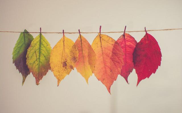 3 načina kako se pokrenuti prema promjenama