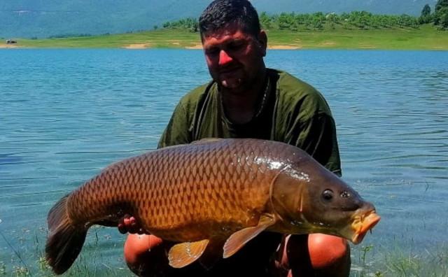 KAKAV ULOV Gruđanin na Ramskom jezeru ulovio šarana od 17,5 kilograma
