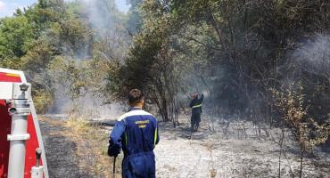U požaru kod Gruda jedna osoba smrtno stradala