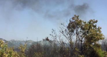 POŽAR KOD NEUMA Vatrogasci obranili kuće i nekadašnju tvornicu