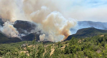 VELIKI POŽARI Vlada FBiH Turskoj ponudila 41 vatrogasca i 100 pripadnika CZ
