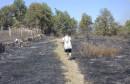 Požar Gradnići