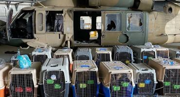 Posljednji američki vojnik napustio Afganistan, pse ostavili u zračnoj luci. Dvadesetogodišnji rat je i službeno gotov