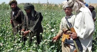 UNOSAN BIZNIS Nakon preuzimanja vlasti, talibanska proizvodnja heroina će doživjeti ekspanziju